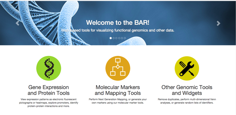 Screen capture of the BAR homepage after the UX design makeover