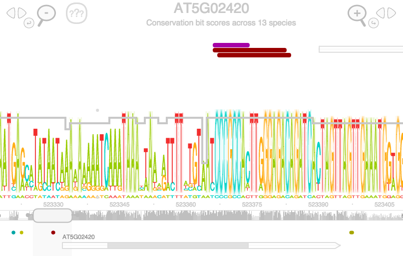 Screen capture of the Gene Slider visualization tool